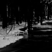 Veiled Allusions - Veilled Allusions/Vinterriket Split